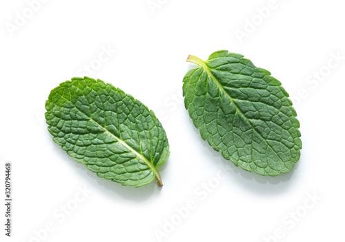 Fototapeta fresh green mint leaves isolated on white background. top view. obraz