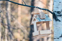 Wooden Feeder For Birds And Sq...