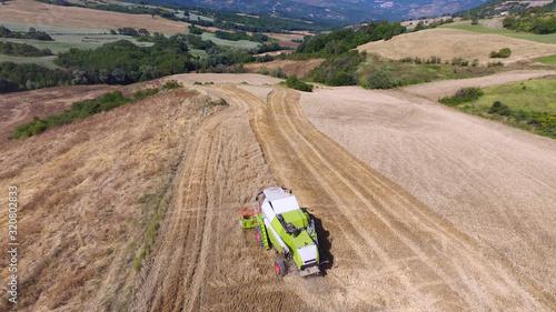 Vászonkép Trebbiatrice taglia il grano in un campo in Abruzzo