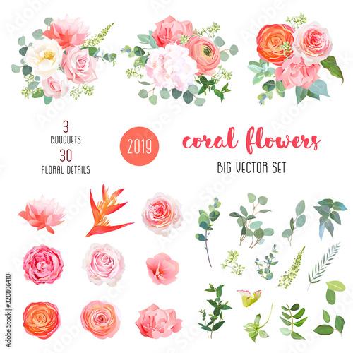 Canvas Print Orange ranunculus, pink rose, hydrangea, coral carnation, garden flowers