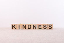 KINDNESS Word Made With Buildi...