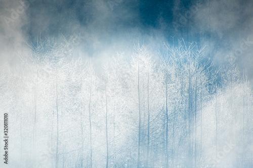 Photo 氷点下22℃の世界