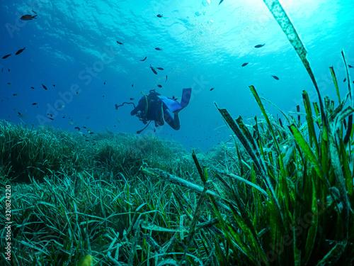 Enfant plongée sous marine Canvas Print