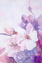 Fototapeta Do sypialni Closeup view of beautiful floral watercolor painting