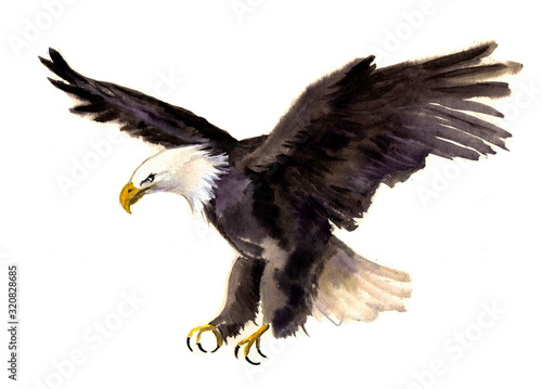 Photo Cute watercolor eagle on the white background