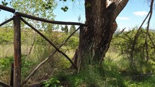 Wooden Farm Fence Next To An O...