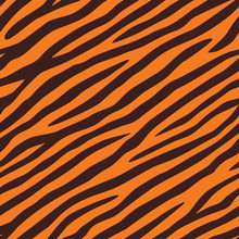Background Texture Of Tiger Sk...