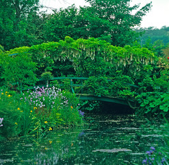 Fototapeta Ogrody The Lilypond with the Japanese Bridge at Claude Monet's garden