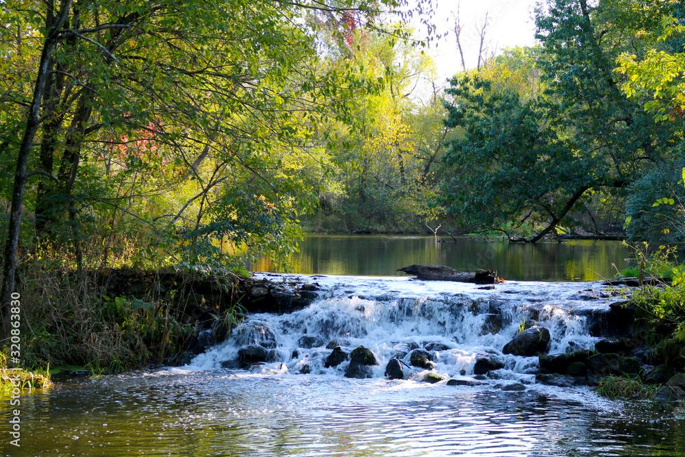 Fototapeta close-up creek river waterfall forest
