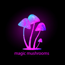 Mushrooms Silhouette With Universe Inside