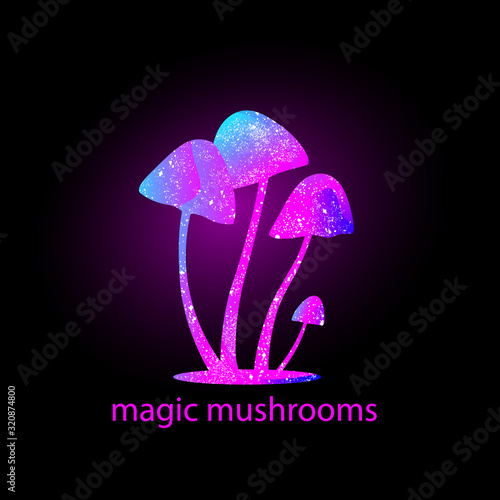 Fotomural mushrooms silhouette with universe inside