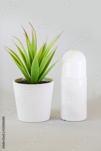 Body antiperspirant deodorant roll-on close up, standing beside the plant on a light background Wallpaper Mural