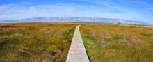 Eco Park Of The Nin Lagoon. Ni...