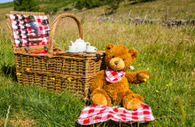 Teddy Bears Picnic In An Engli...
