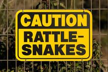 Caution Rattlesnakes Wildlife ...