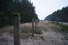 Unfenced Sandy Path Green Germ...