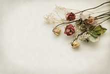 Floral Frame Bouquet Of Dried ...