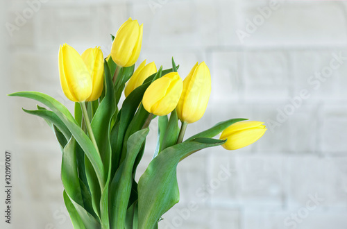 Bouquet of yellow tulips in natural light. Spring flowers