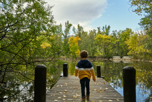 Boy On The Lake Jetty In Autumn