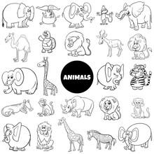 Cartoon Animal Characters Larg...
