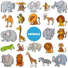 Cartoon Wild Animal Characters...