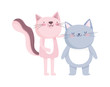 little cat and pink cat cartoon character on white background