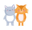 little cat and fox cartoon character on white background