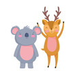 cute deer and koala cartoon on white background