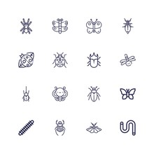 Editable 16 Butterfly Icons Fo...