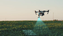 Flying Smart Agriculture Drone. Artificial Intelligence. Drone Scan Agriculture Farm. Agriculture Innovation. Farming Field Industry. Analyze The Field. Professional Vehicle Aircraft.