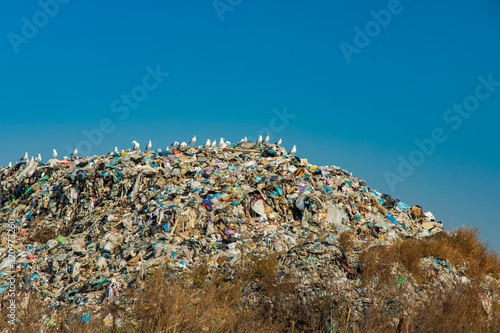 Fototapeta garbage hill pollution disaster concept picture on outskirts dump with gull bird