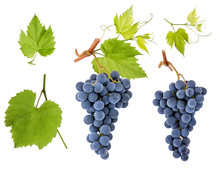 Grape Berry Bunch Set With Gre...