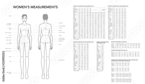 Photo Womens measurements fashion terminology Illustration for lady size chart