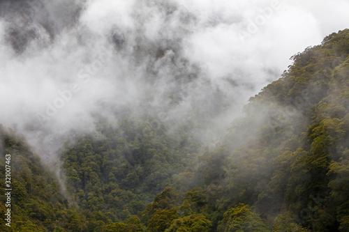 Mount aspiring National Park New Zealand Canvas Print
