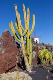 2020 Lanzarote