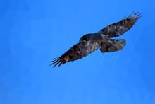 Bird Polygonal Low Poly Geometric. Flying Crow. Sky Background.