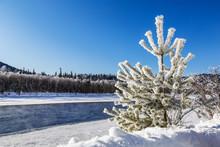 Winter Landscape With The Katu...