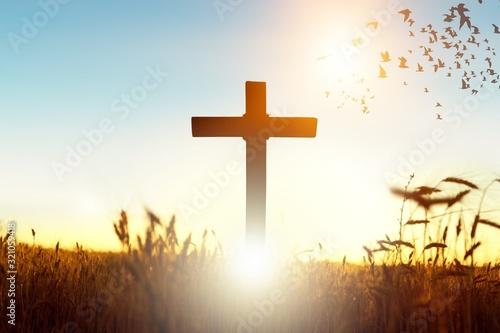 Fotografia Cross.