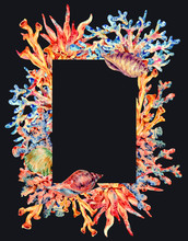 Watercolor Vintage Sea Life Natural Frame, Underwater Summer Illustration,