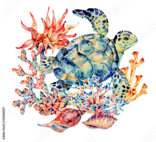 Watercolor vintage sea life natural greeting card Wall mural