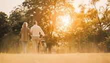 Beautiful Senior Couple Walkin...
