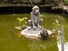 Hindu Temple, Monkey Sitting O...