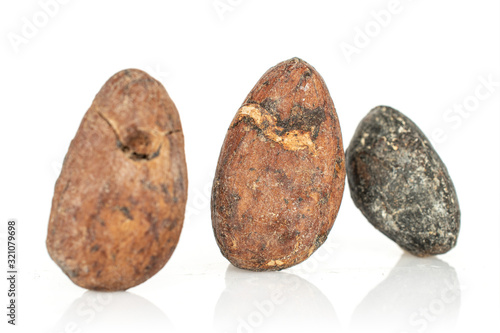Group of three whole fresh brown cocoa bean isolated on white background Wallpaper Mural