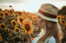 Beautiful Woman In Meadow With Sunflowers.