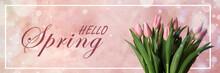 Beautiful Tulips On Pink Backg...