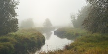 Panoramic Misty Morning View W...