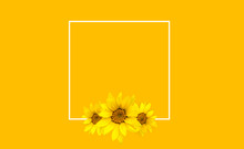 Yellow Floral Background With ...