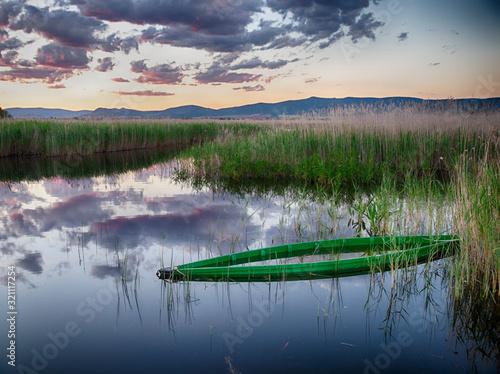 Photo Barca verde hundida entre vegetación acuática al atardecer