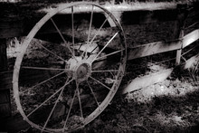 Country Wheel