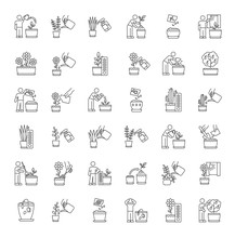 Houseplant Care Pixel Perfect Linear Icons Set. Repotting, Replanting. Planting Seeds. Watering. Customizable Thin Line Contour Symbols. Isolated Vector Outline Illustrations. Editable Stroke